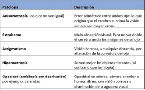 tabla defectos visuales 300x187 - tabla defectos visuales